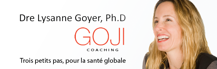 Lysanne Goyer, Goji Coaching